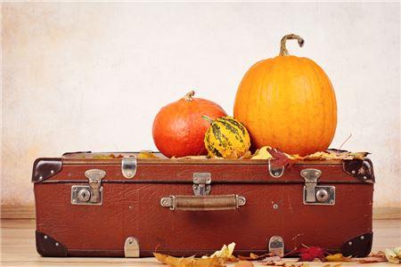 Thanksgiving Travel Bookings Ramp Up