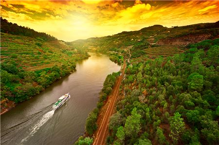 Travel Market Report Releases the First-of-its-Kind Outlook on River Cruises