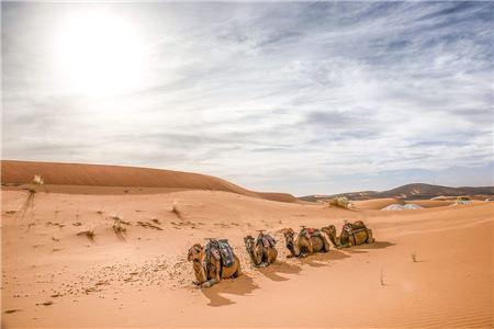 Heritage Tours Opens Desert Encampment Luxury Experience