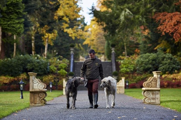 A Day in the Life at Ireland's Ashford Castle