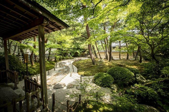 Japanese Gardens AK
