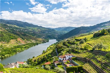 One Trend Leads To The Next On Portugal's Douro River