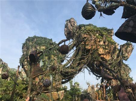Disney Brings James Cameron's Avatar To Life