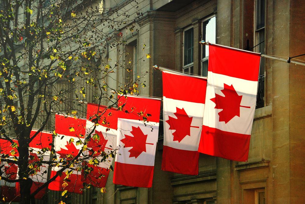 Supplier Spotlight: Global Affairs Canada