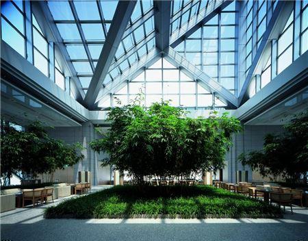 Hyatt's Laser-Sharp Focus on Luxury and Wellness
