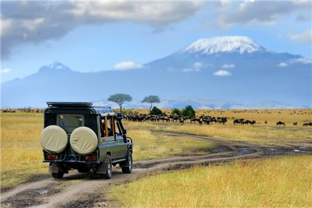 African Travel's Fam Provides First-Hand Safari Experience