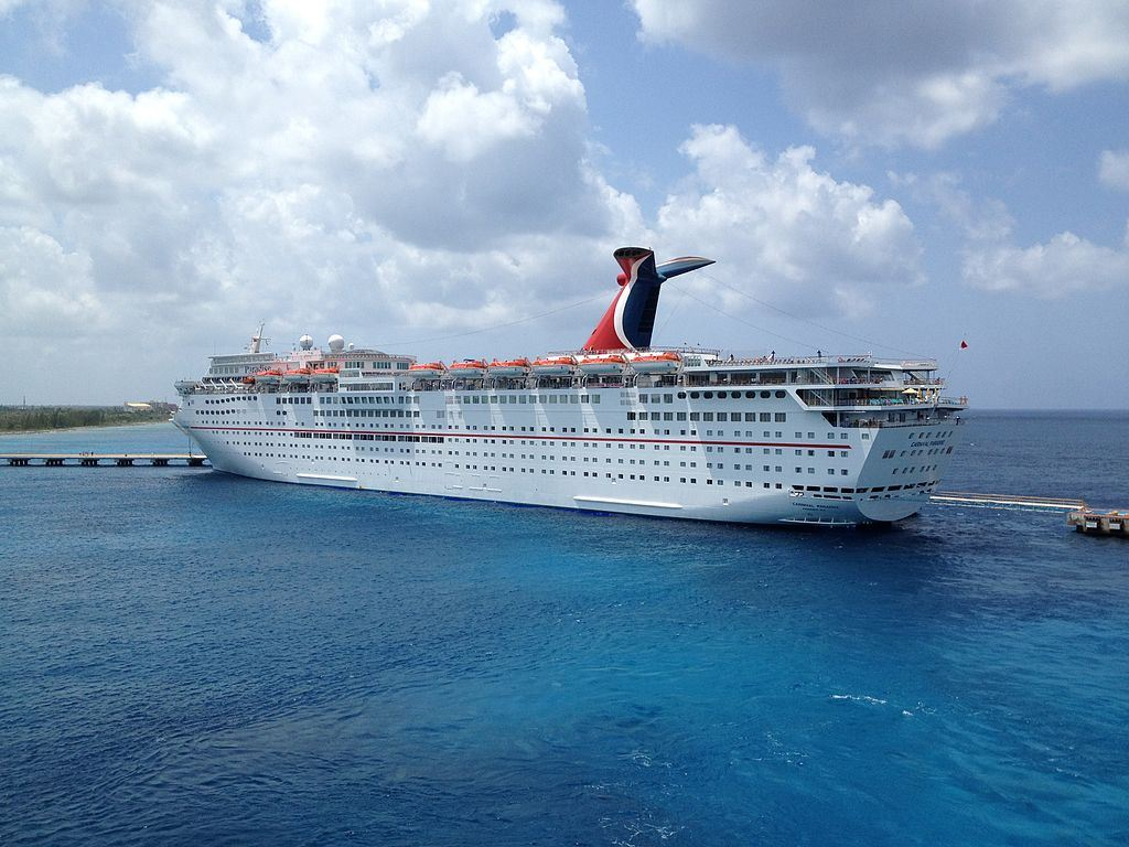 5 forces of carnival cruise line Five forces framework  ownership of carnival cruise lines with $1 in cash and $5 million in debt  instead of launching a new cruise line from scratch, carnival.
