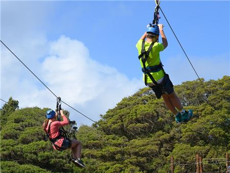 Discover St. Kitts' Top Island Experiences