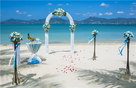Supplier 'Come Back' Programs Raise Ire of Destination Wedding Specialists