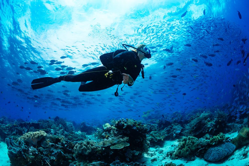 How One Advisor's Scuba Hobby Created Sustainable Passion